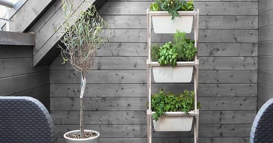 1x Vertical Garden