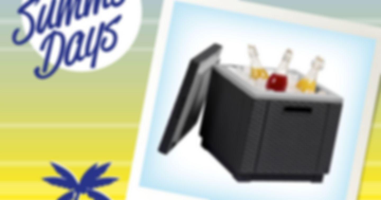 2x eine Kühlbox