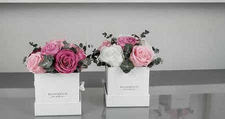 -20% auf Infinity-Blumen
