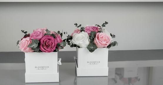 Mach dir oder deinen Liebsten eine besondere Freude mit wunderschönen Blumen für die Ewigkeit! Mit unserem Bloomésie Studentenrabatt sicherst du dir jetzt 20% Nachlass auf alle Infinity-Blumen-Bouquets.