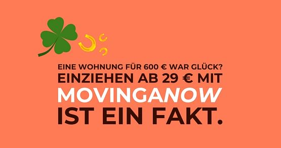 MovingaNow Gutschein Foto 3