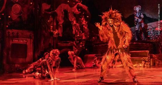 Ronacher Theater Gutschein Foto 5