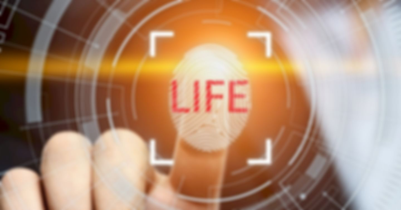 Wessen Leben lebst du?